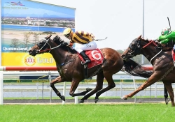 Final Zero leads all the way to win at the Sunshine Coast
